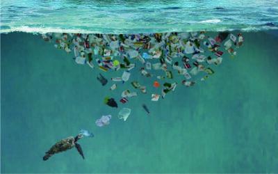 Nique qui tu veux mais pas ta terre ! Et encore moins ta mer…